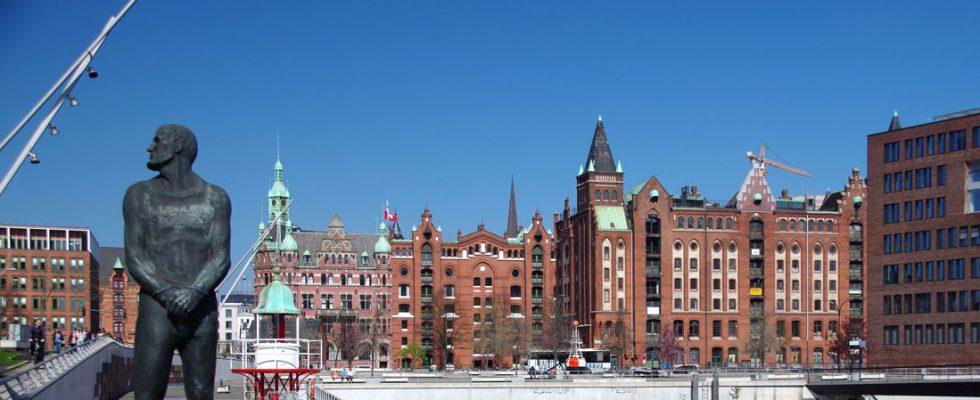 Hamburg Metropolitans